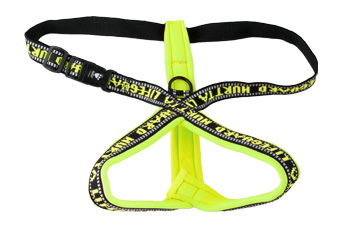 LIfeguard y-reflexharness