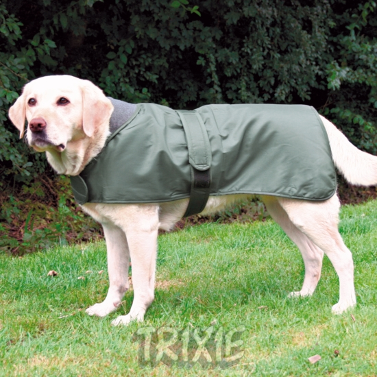 TX30352 T-coat Lyon green