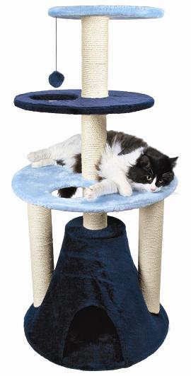 TX43983 cat Furniture Tortorsa