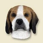 Dog magnets Beagle