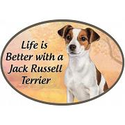 Jack russell nagnet